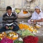 India Jan 2011 111