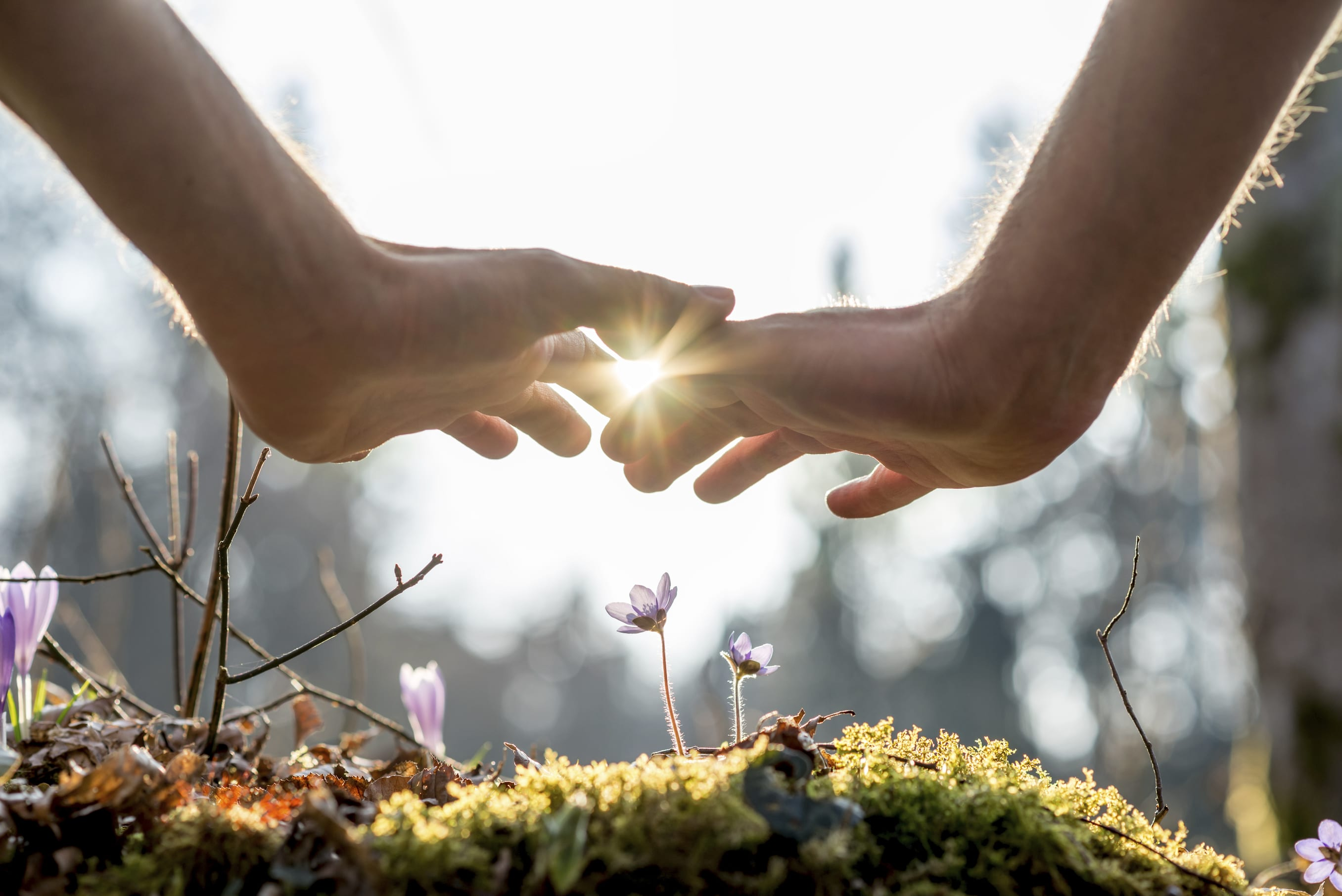Finding Light in the Darkness: Tapping Our Strengths in Difficult Times